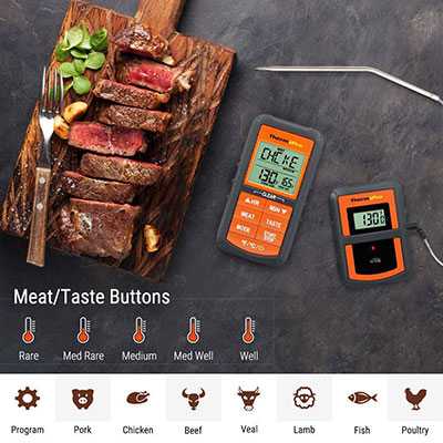 best meat thermometers for everyday use